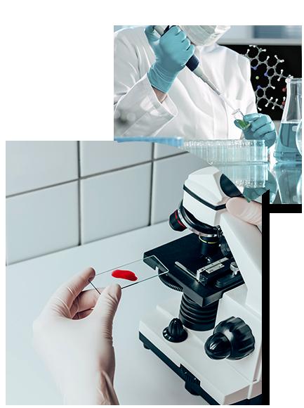 Product Stewardship Quality Control Inhalation toxicology Quality control Litigation